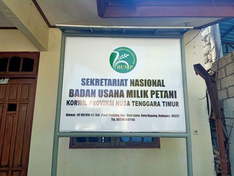 Jelang Idul Adha, BUMP Kupang Kirim Sapi ke Kalimantan Selatan