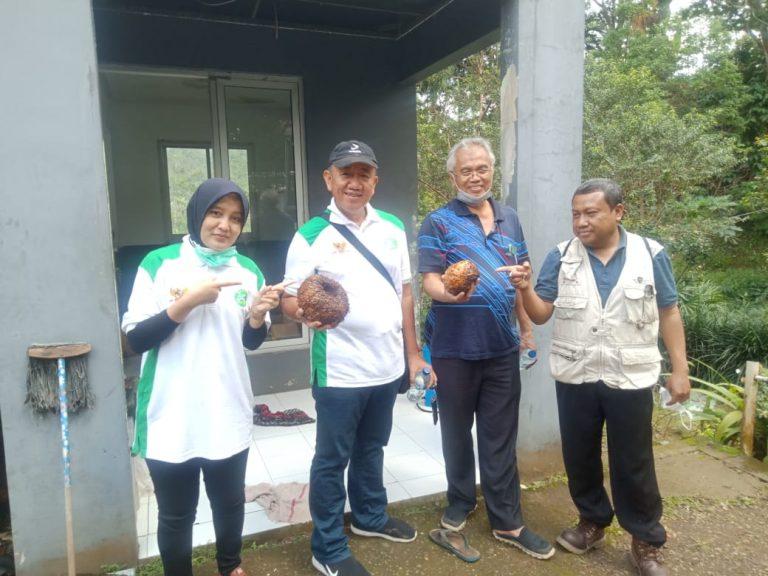Kembangkan Porang, PT. Bima Sahabat Bumi Gandeng Seknas BUMP Indonesia