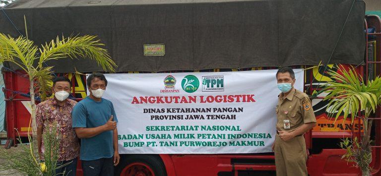 Cegah Kelangkaan, BUMP PT. Tani Purworejo Makmur Kirim Beras ke Jakarta